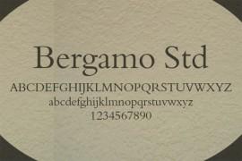 Bergamo STD字体下载